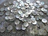 真珠の母貝 パールシェル アコヤ貝 18mm 100個