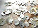 パールシェル貝ボタン 各サイズいっぱい142個入って大特価