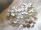 茶蝶貝 まっ平ら型 2穴 11.5mm 50個セット