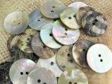 500円 送料無料 真珠の母貝 パールシェル アコヤ貝ボタン