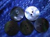 黒蝶貝 皿型No.1104 2穴 30mm 5個セット