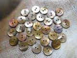茶蝶貝 まっ平ら型 2穴 15mm 30個セット