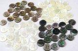 最高級白蝶貝,黒蝶貝,高瀬貝,茶蝶貝 各20個づつ 定番のNo.17型 4穴
